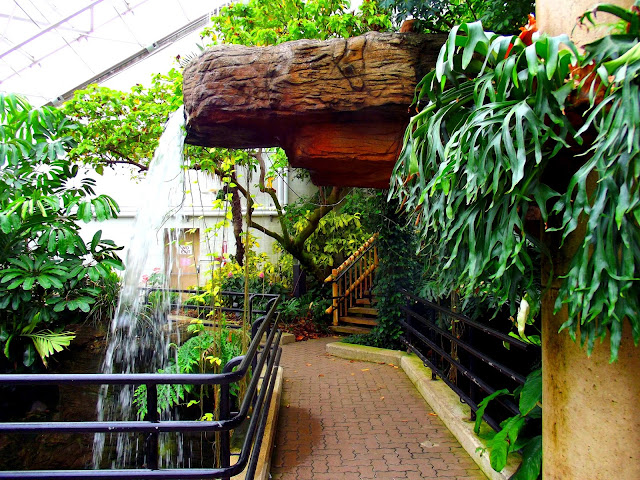 Waterfall in the Conservatory