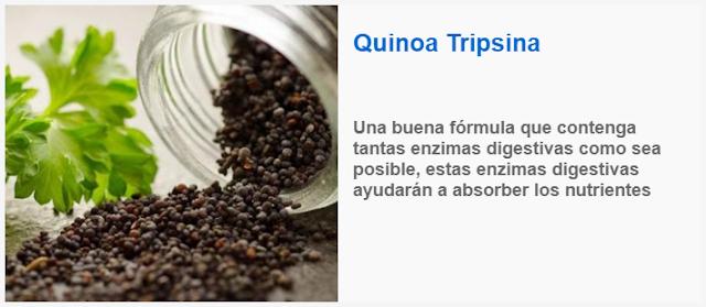 La Quinoa Tripsina para el intestino irritable