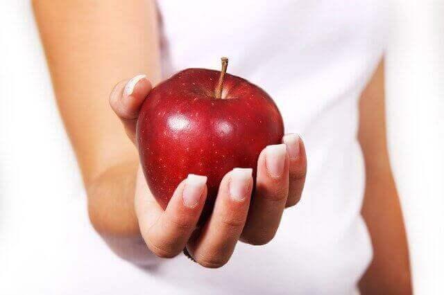 افضل الأنظمة الغذائية التي تحقق أفضل النتائج