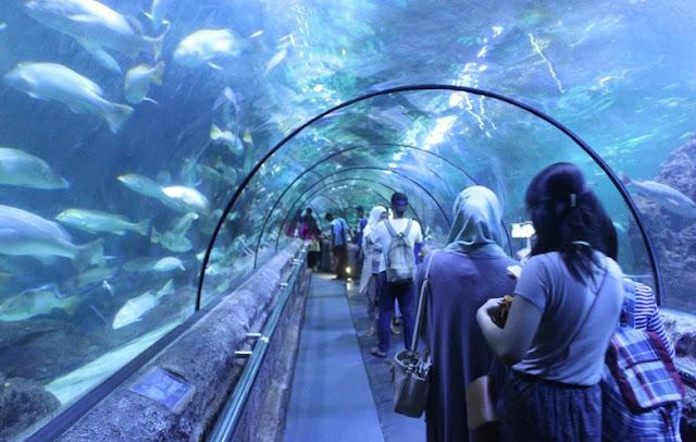3-Destinasi-Wisata-Keluarga-di-Jakarta-yang-Murah-dan-Edukatif