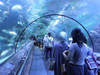 3 Destinasi Wisata Keluarga di Jakarta yang Murah dan Edukatif