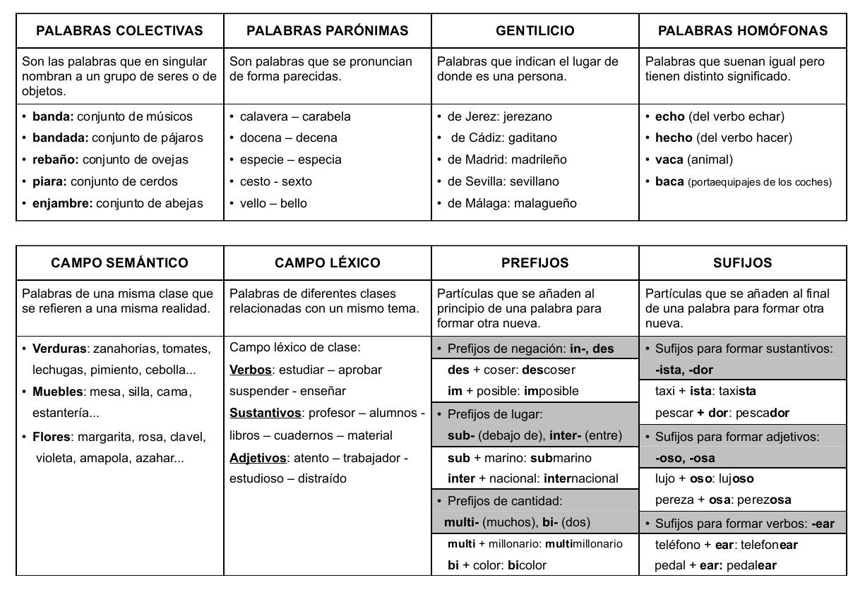 educativo lengua resumen vocabulario