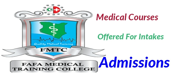 Medical courses offered at Fafa medical school