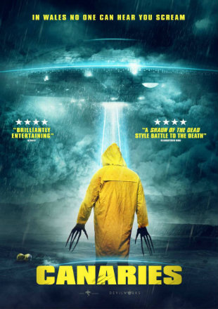Canaries 2017 WEBRip 800Mb Hindi Dual Audio 720p