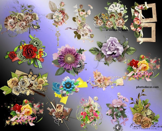 Most beautiful flower clusters clipart PNG