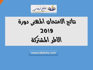 نتائج الامتحان المهني دورة 2019