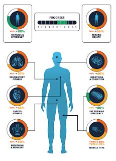 VO2 max test RMR test metabolisch testen cardio neuromusculair