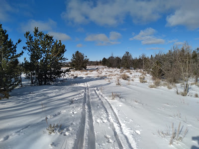 Two sets of ski tracks on open snow with a blue sky