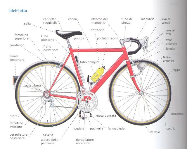 componenti della bici nomi
