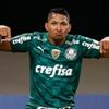 www.sewuguara.com.br/Rony/Palmeiras/Copa Libertadores 2021/