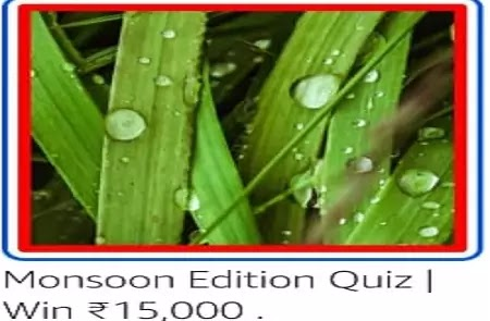 The word Monsoon originated from which language?