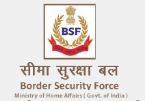 BSF SMT SI CT BS & TS Exam Results 2014