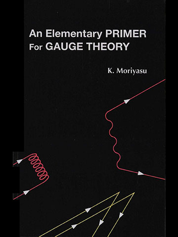 """Finally, a book that gently explains gauge theory (Source: K. Moriyasu, """"An Elementary Primer for Gauge Theory"""")"""