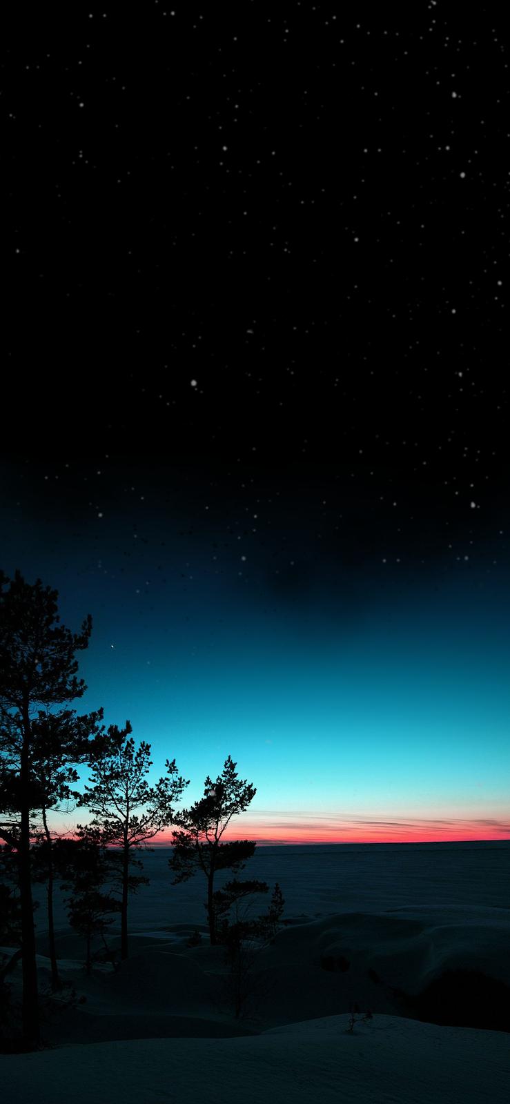 Desert night sky