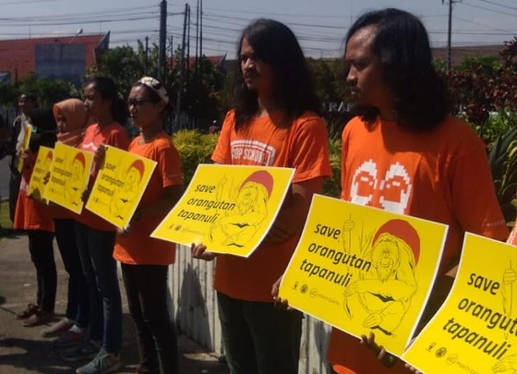 Aktivis Soroti PLTA Batang Toru Karena Ancam Orangutan