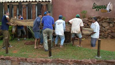 Monjolo de madeira de Jacarandá sendo colocado no eixo de madeira para começar a funcionar com a bica d'água de madeira no lago de pedra.
