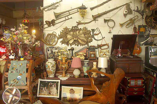 antiques,horns,photos, collecti0on, miuseum