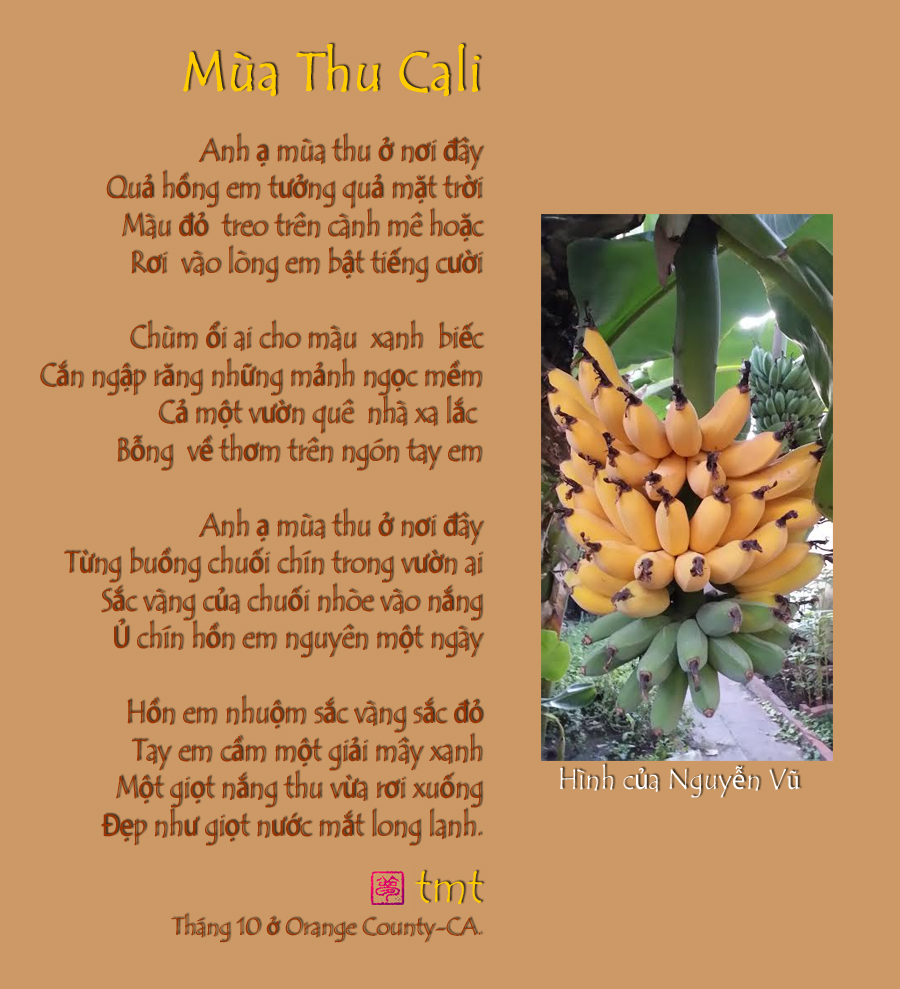 Trần Mộng Tú - Nhà thơ nữ hải ngoại Image001