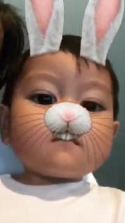 Mason jadi kelinci
