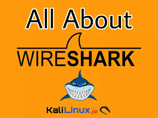 Wireshark -- Shark in Wires | Network Protocol Analyzer in Kali Linux
