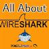 Wireshark -- Shark in Wires | Network Protocol Analyzer in Kali Linux