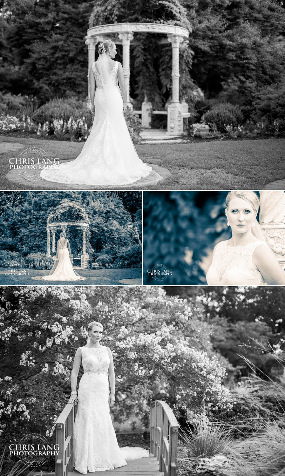 Bridal Pictures - Arboretum - Wilmington NC - Bridal Ideas - Chris Lang Photography