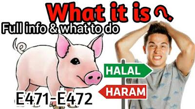 e471 खाद्य योज्य हलाल या हराम | e471 Halal Ya Haram