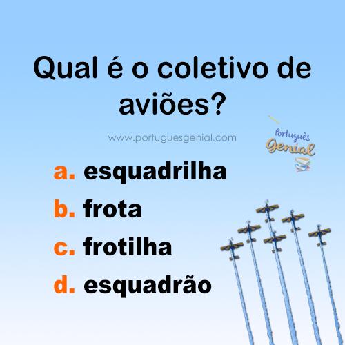 Coletivo de aviões - Qual é o coletivo de aviões?