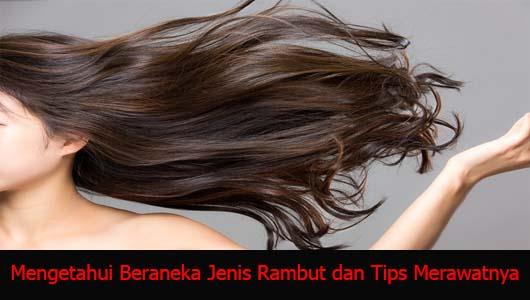 Mengetahui Beraneka Jenis Rambut dan Tips Merawatnya