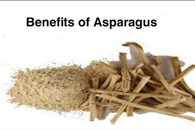 Health Benefits of Shatavari/Asparagus