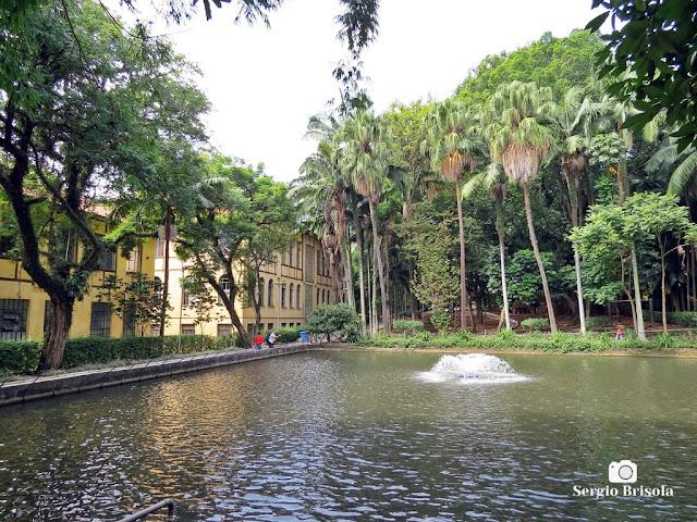 Vista do tanque de peixes do Parque da Água Branca - São Paulo