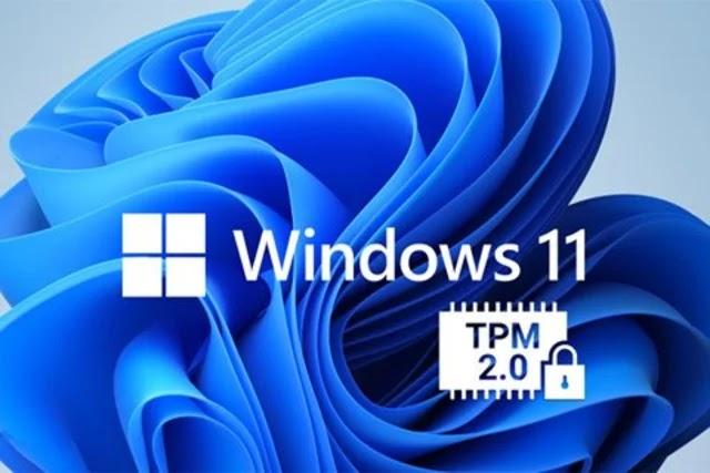 تعرف على شريحة TPM ولماذا سيتم حرمانك من Windows 11 إذا لم يكن لديك؟