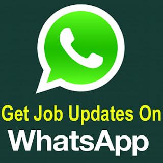 whatsapp job updates