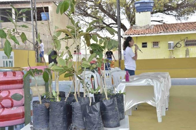 Prefeitura de Japi realiza atividades em comemoração ao Dia Mundial da Árvore