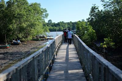 jembatan kayu Hutan Mangrove Blok Bedul, Banyuwangi