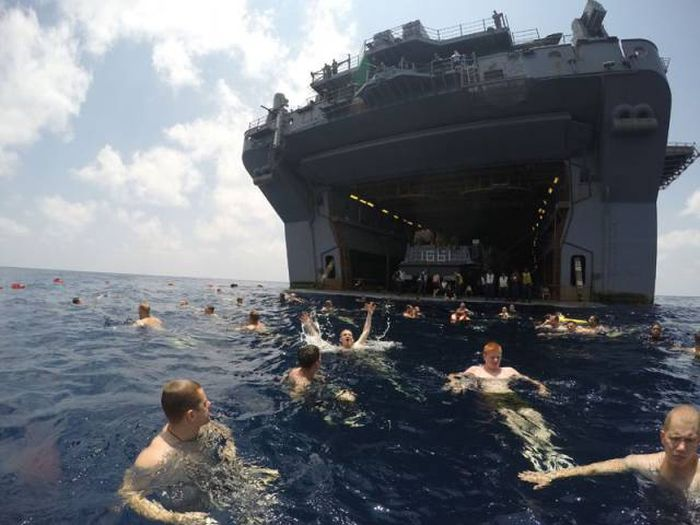 Swimming in the Gulf of Aden