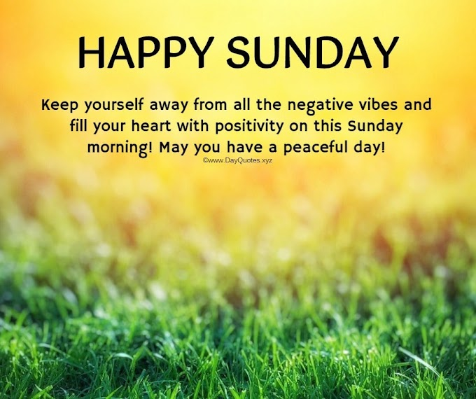 21+ [Latest] Happy Sunday Images: Images Of Happy Sunday That Will Fill Your Weekend With Happiness