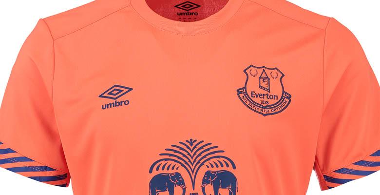 Everton 15-16 Training Shirts Revealed - Footy Headlines 445f53495