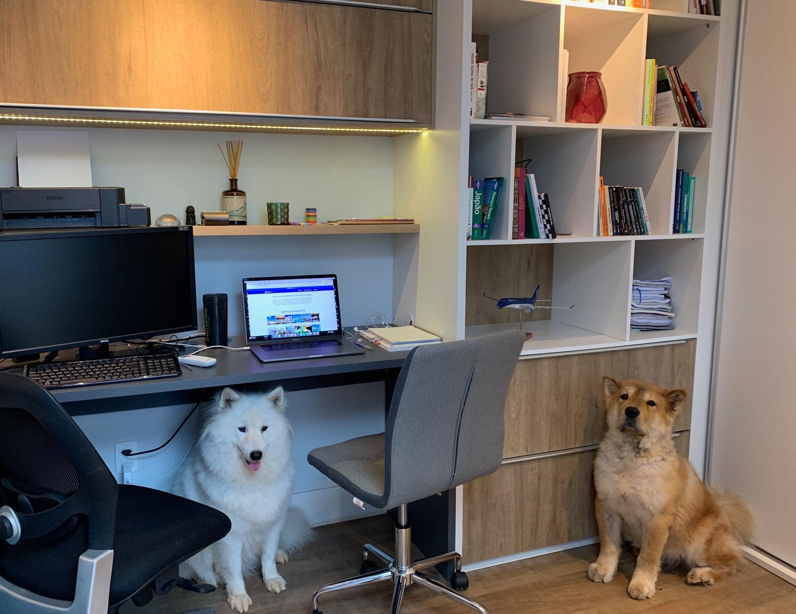 Home Office: dicas para ser mais saudável