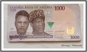 earn 1000 naira daily