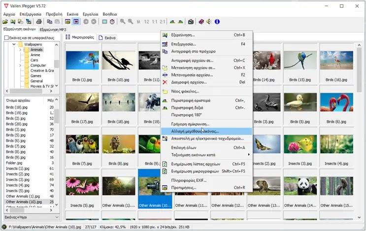 Vallen JPegger  :  Eφαρμογή προβολής εικόνων και Mp3 Player