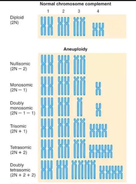 Macam-macam kelainan kromosom