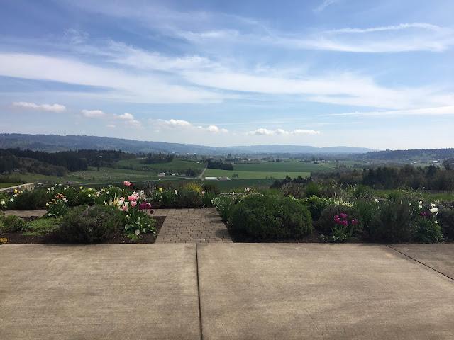 Penner-Ash Vineyard, Dundee Hills, Oregon   A Hoppy Medium