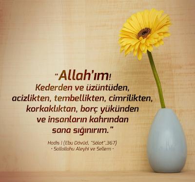 Allah'ım Kederden ve üzüntüden, acizlikten, tembellikten, cimrilikten, korkaklıktan, borç yükünden ve insanların kahrından sana sığınırım. (Amin) Hz. Muhammed (sas), dua, papatya