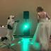 VIRAL! Ο χορός της νύφης με τον σκύλο της