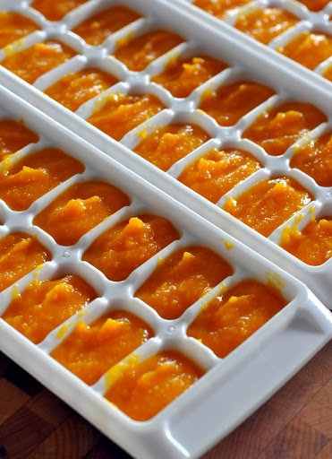 How-To-Make-and-Freeze-Homemade-Baby-Food-Butternut-Squash-Puree-tasteasyougo.com