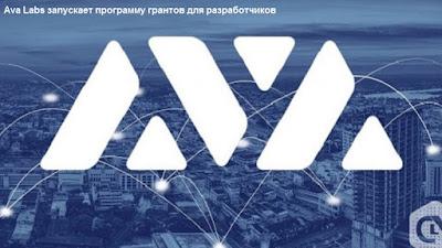 Ava Labs запускает программу грантов для разработчиков