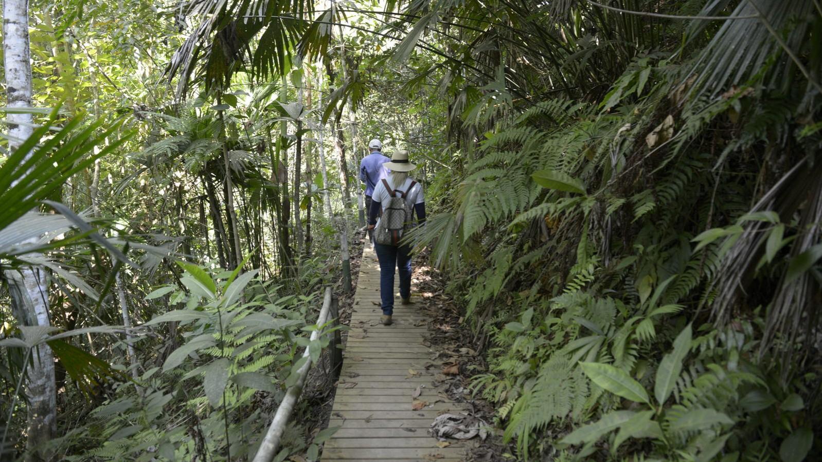 La CARDER y la Fundación Natura fortalecen la gobernanza ambiental en habitantes del  Guásimo