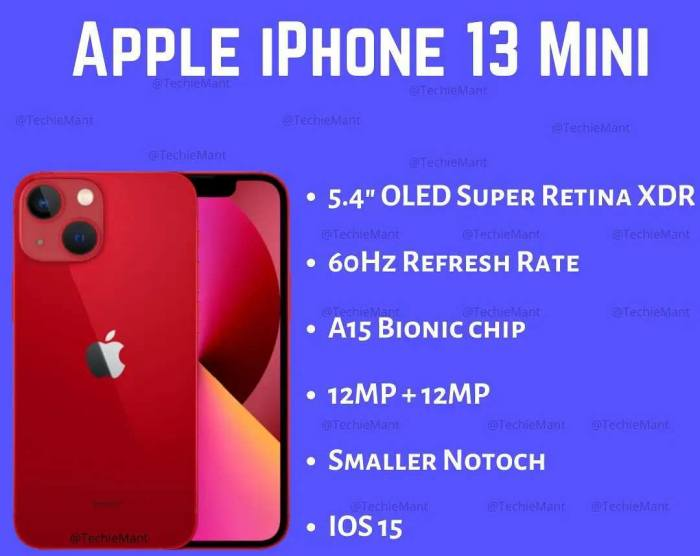 iPhone 13 Mini - IGtechiemant