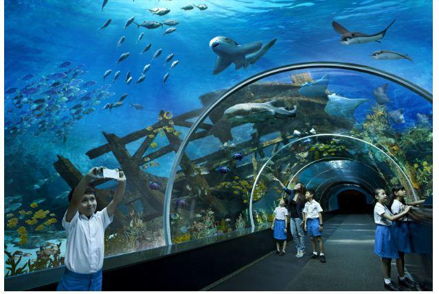 Marine Life Park